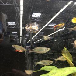 Walmart Supercenter - 29 Photos & 58 Reviews - Grocery - 1030 Sperry
