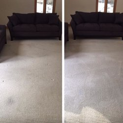 Photo Of Fox Pro Services   Rochester, NY, United States. Carpet Cleaning