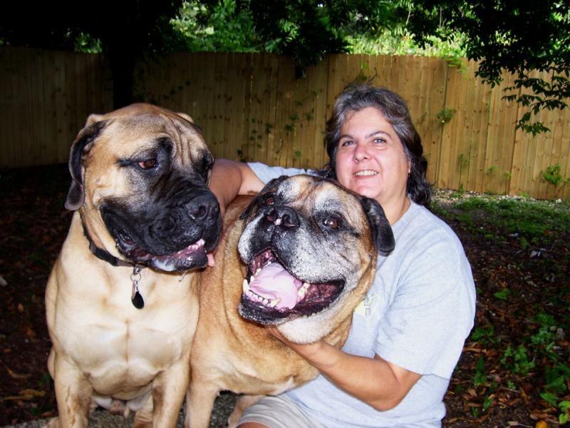 Homestyle Dog Care: 21401 SW 127th Ave, Miami, FL