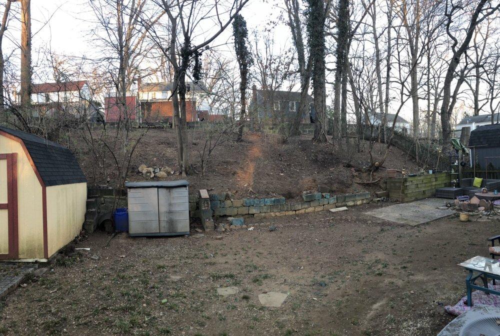 MDR Landscaping & Tree Service: KENSINGTON, MD