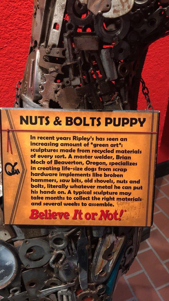 Ripley's Believe It or Not! Myrtle Beach