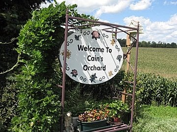 Cain's Orchard: W13885 Cain Rd, Hixton, WI