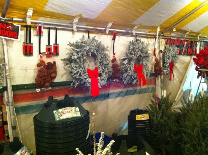 Happy Holiday Christmas Trees: 1415 10th Street, Lake Park, FL
