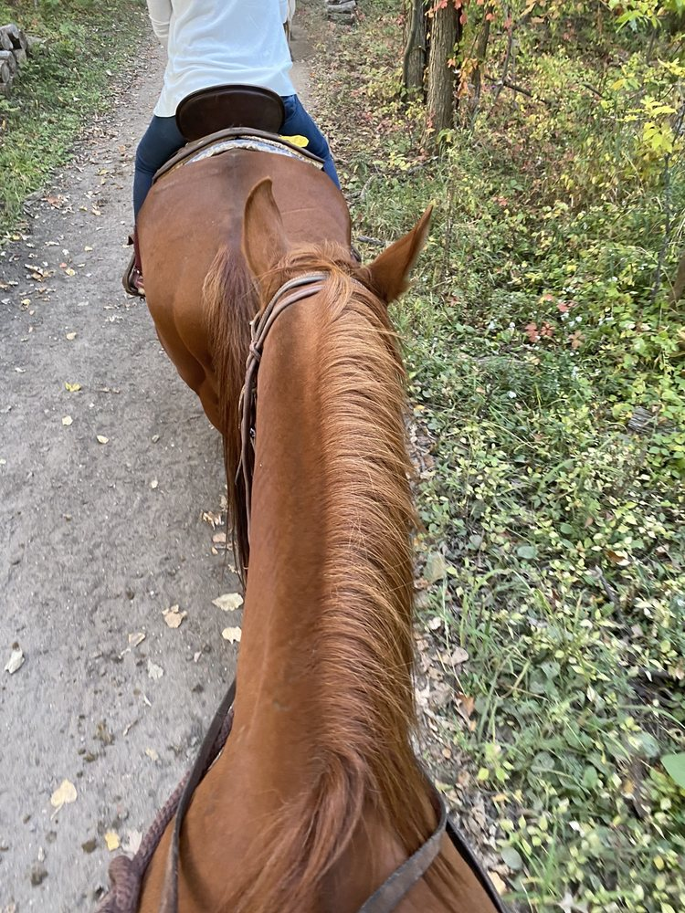 Sundance Riding Stables: 9250 Nixon Rd, Grand Ledge, MI