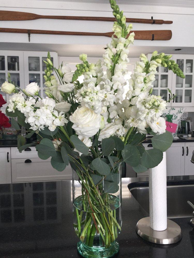 Bloom Plus