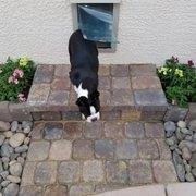 ... Photo Of Purrfect Pet Doors   Las Vegas, NV, United States.