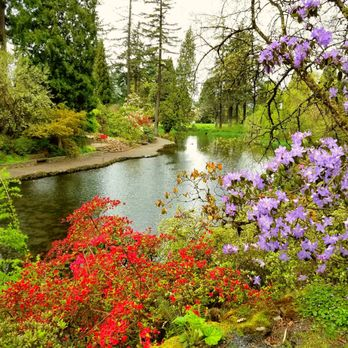 Exceptionnel Photo Of Crystal Springs Rhododendron Garden   Portland, OR, United States