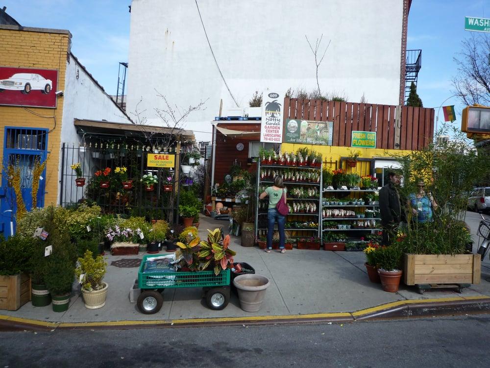 Photo Of Natty Garden   Brooklyn, NY, United States. Natty Garden