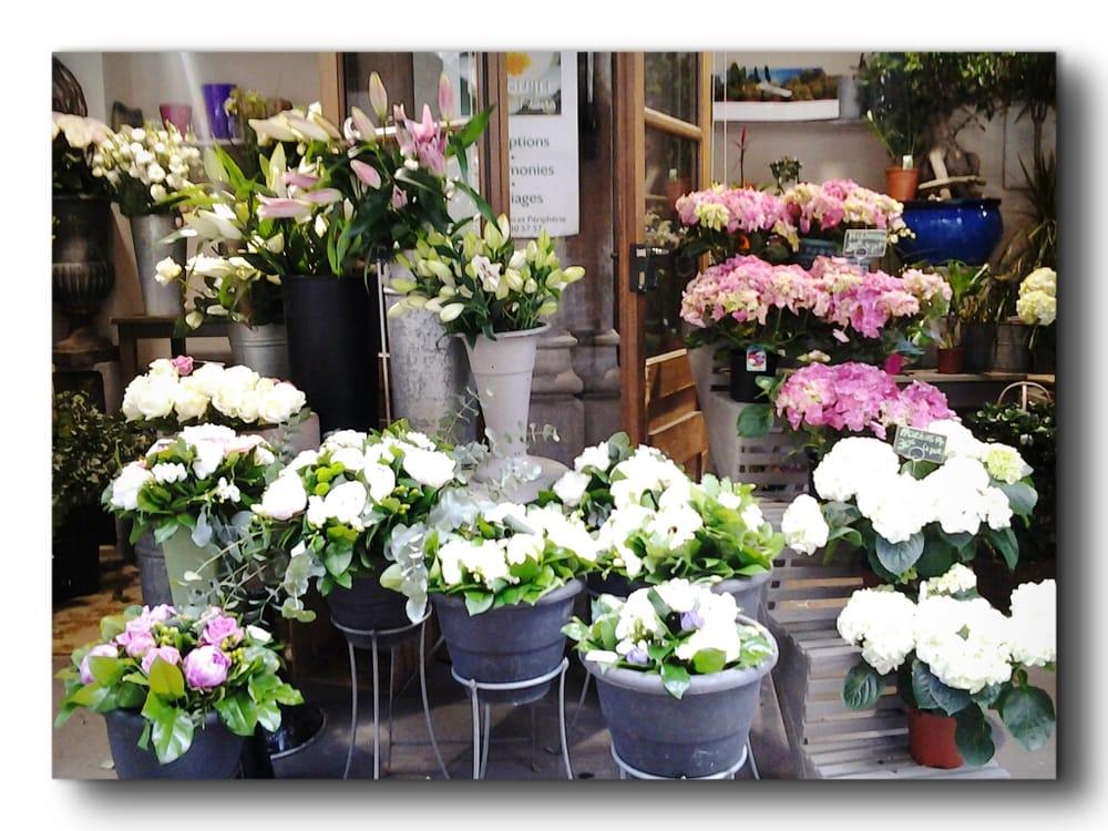 Presqu le fleurs fleuriste rue du pr sident edouard for 9 rue du jardin des plantes 69001 lyon
