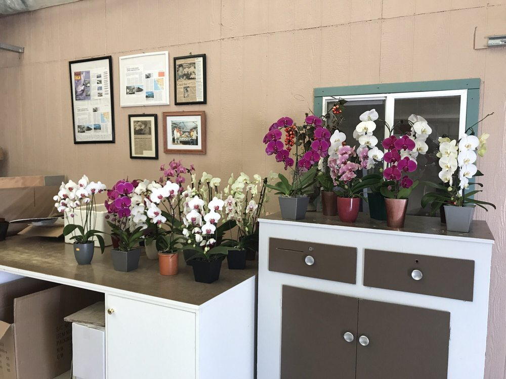 The Orchid Barn