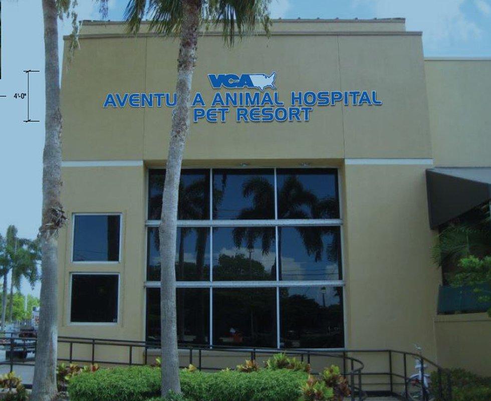 VCA Aventura Animal Hospital & Pet Resort - 11 Photos & 23