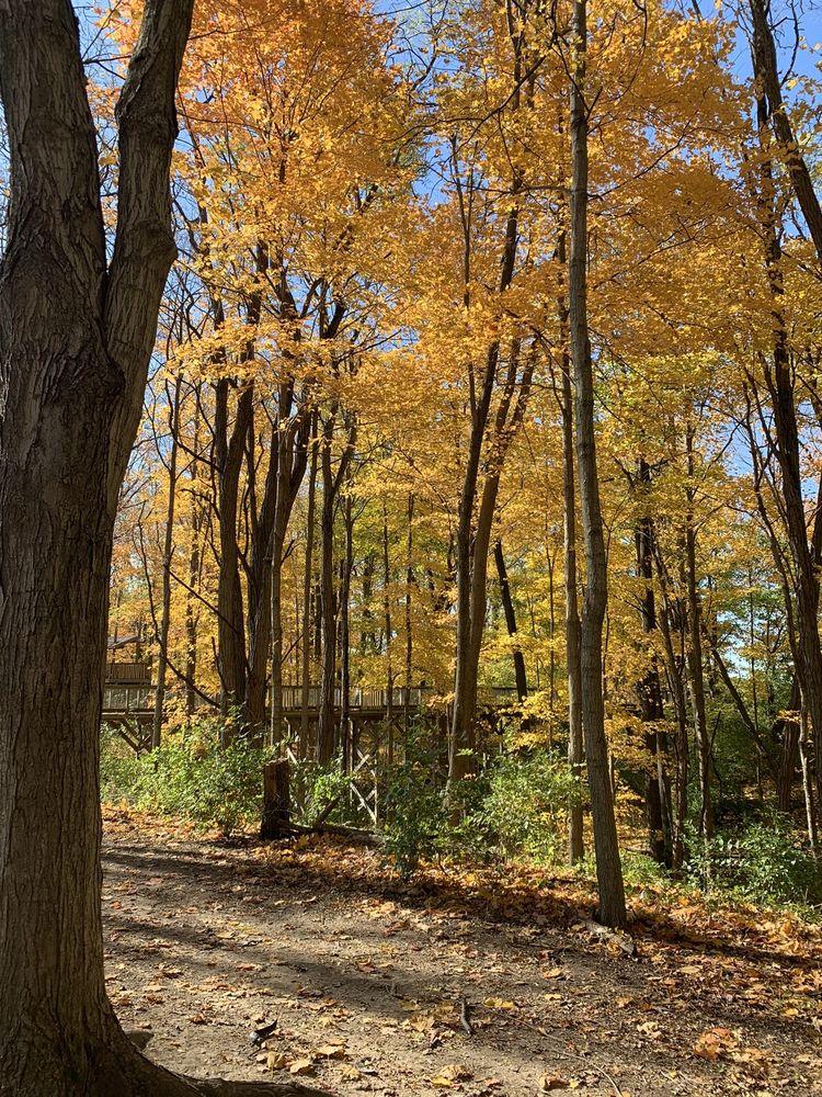 Flat Fork Creek Park: 16141 E 101st St, Fortville, IN