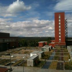 Universidad complutense de madrid campus de moncloa for Jardin botanico ucm