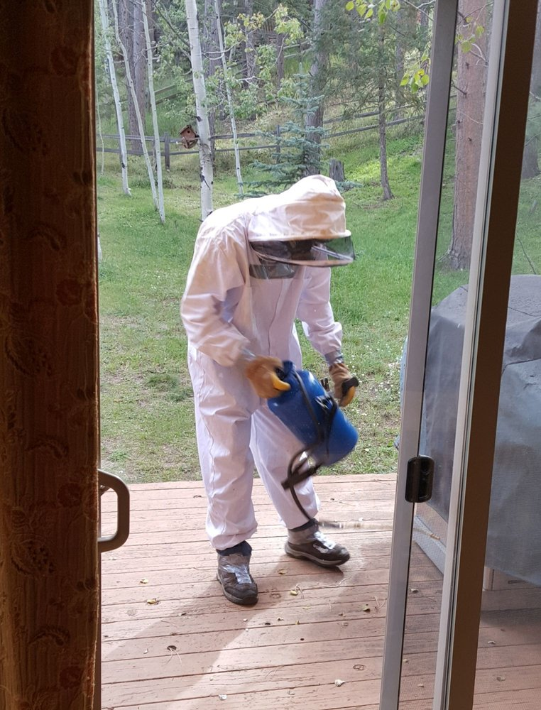 Central Mountain Pest Control and Animal Trapping: 4799 Wildhorn Rd, Florissant, CO