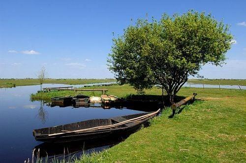 Lac de grand lieu botanical gardens saint philbert de for Piscine saint philbert de grand lieu