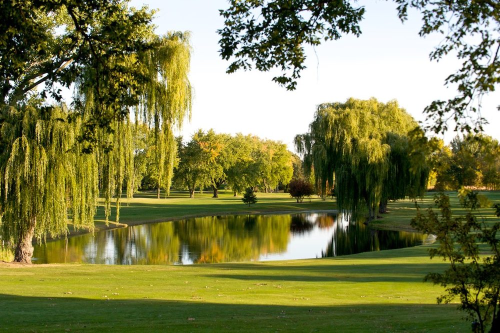 Green Lea Golf Course: 101 E Richway Dr, Albert Lea, MN