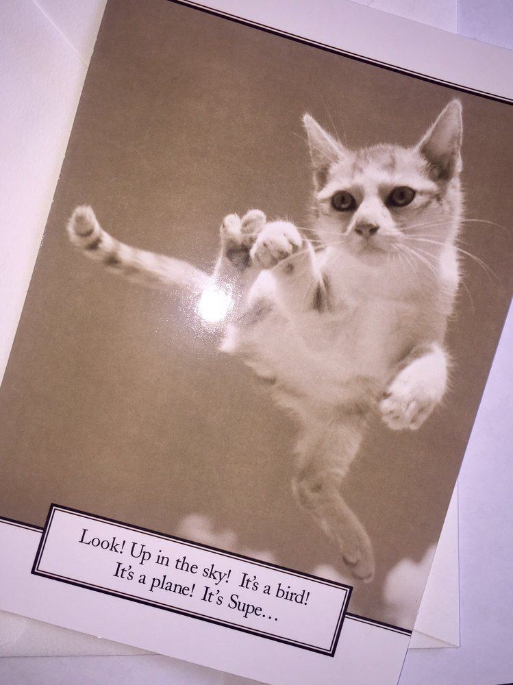 Just Purchased This Cute Birthday Card From The Post Office The