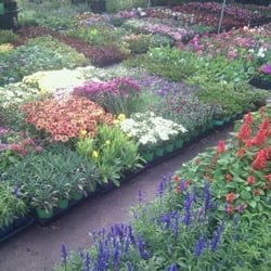 Photo Of Orta Garden Supply Nursery Culver City Ca United States