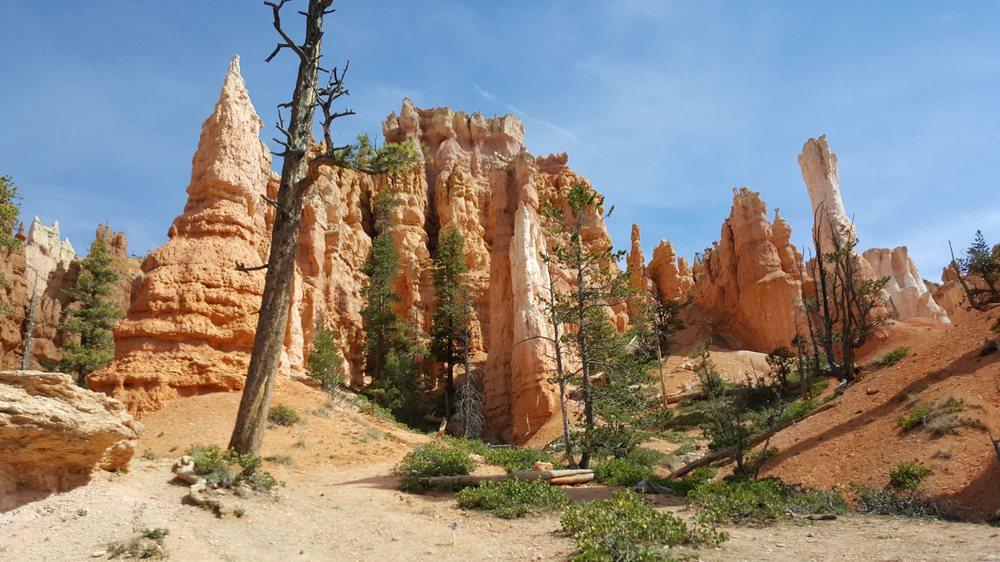 Queen's Garden: Bryce Canyon National Park, Bryce, UT