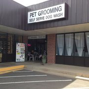 Purr y paws closed 23 photos pet groomers 10441 s parker rd only the best photo of purr y paws parker co united states experience the de solutioingenieria Choice Image