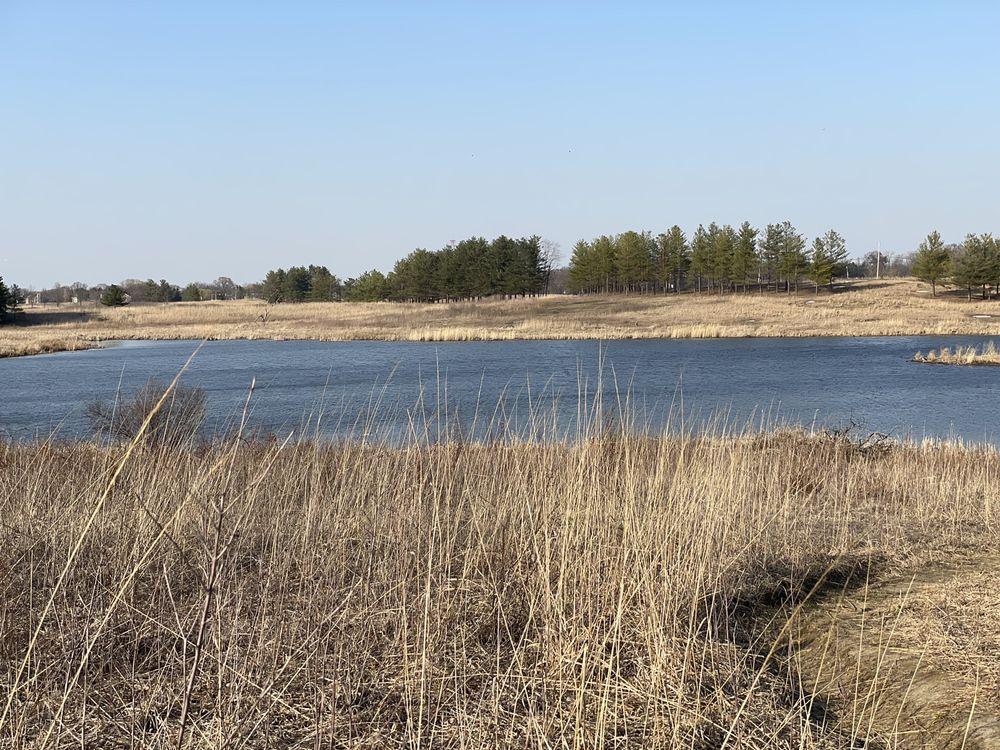 Cuba Marsh Forest Preserve: Cuba Rd & N Ela Rd, Barrington, IL