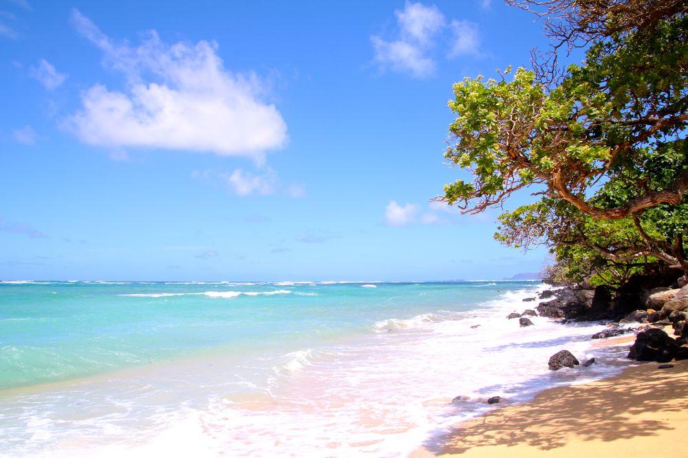 Ka'a'awa Beach Park: 51-329 Kamehameha Hwy, Kaaawa, HI