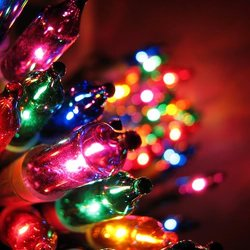 Johnny Christmas Lights