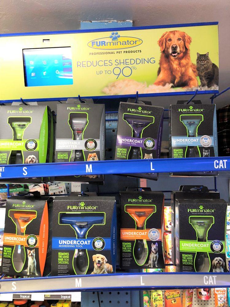 Animal House Pet Shop: 333 Fox St, Lemoore, CA