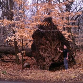South Mountain Reservation Dog Park South Orange