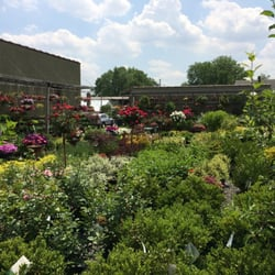 Centre Ridge Garden Center Gardening Centres 652 Centre St Nutley Nj United States