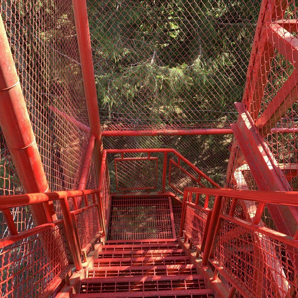 Pinicon Ridge Park: 4729 Horseshoe Falls Rd, Central City, IA