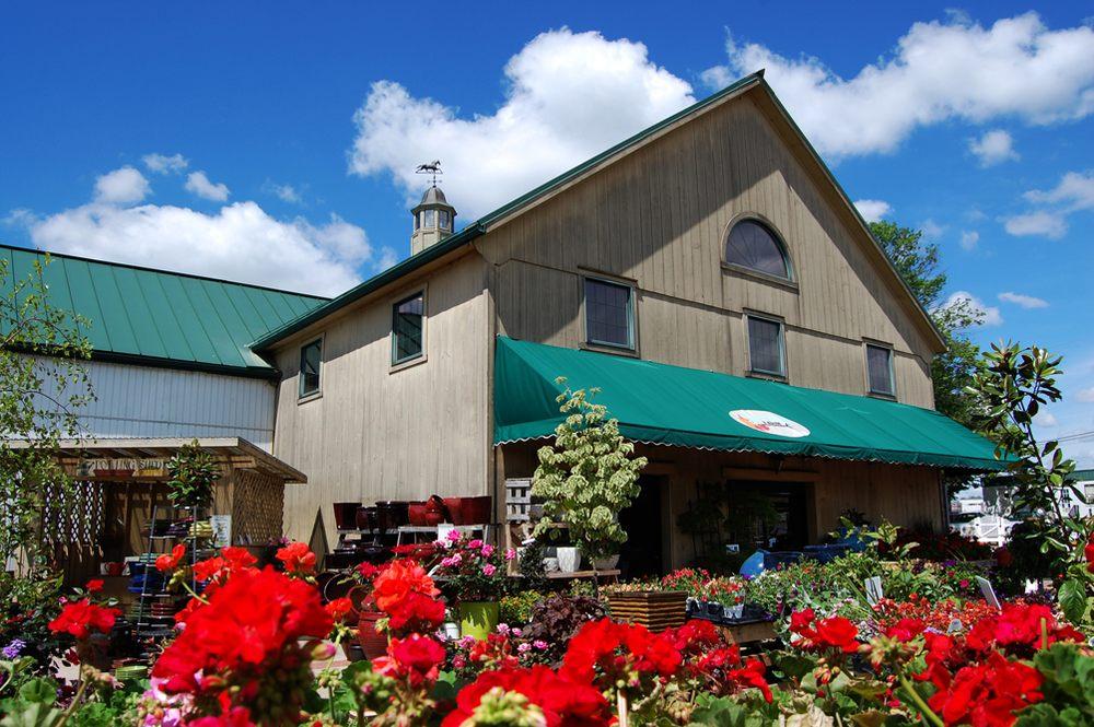 Shady Brook Farm
