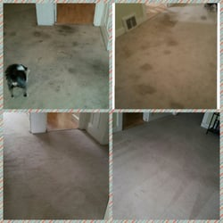 Photo of USA Carpet Cleaning - Concord, CA, United States. This was the