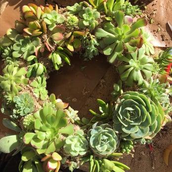 Garden Apothecary - 71 Photos & 40 Reviews - Nurseries & Gardening ...