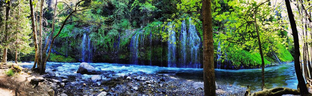 Mossbrae Falls - Access Restricted: Dunsmuir, CA