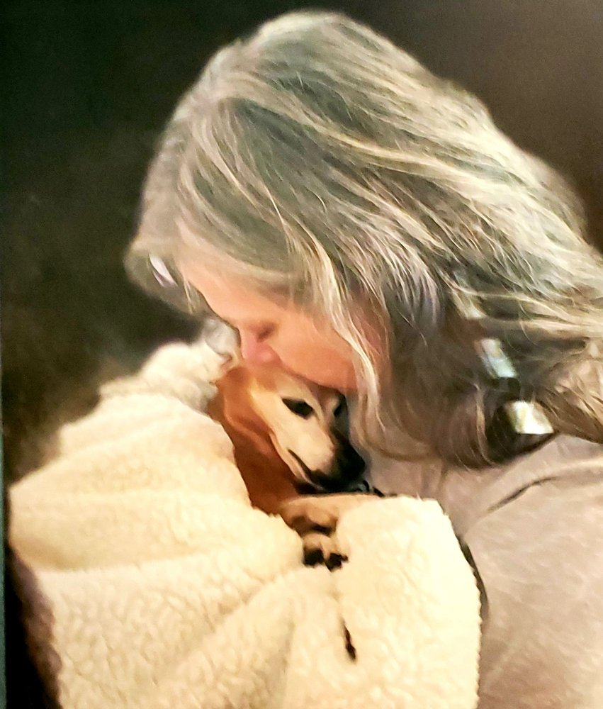 Whispering Willows Senior Dog Sanctuary: 22051 Old 64 Hwy, Hermitage, MO