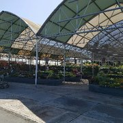 It S Like Photo Of Mid City Nursery American Canyon Ca United States Huge