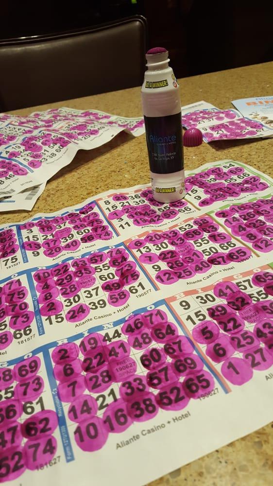 telefonnummer bingo