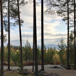 Tree Hotel 20 Photos Hotels Edeforsv 2 A Harads Sweden
