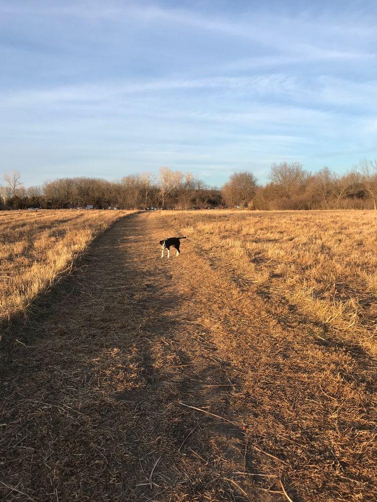 Mutt Run: 1330 E 902nd Rd, Lawrence, KS