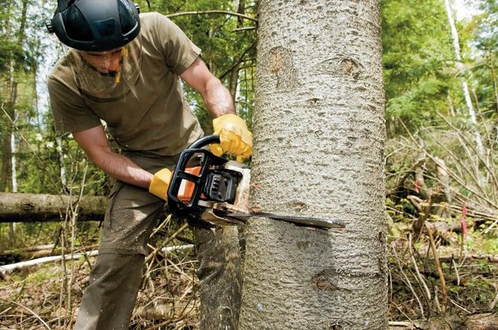 Nick's Tree Service: Juneau, WI