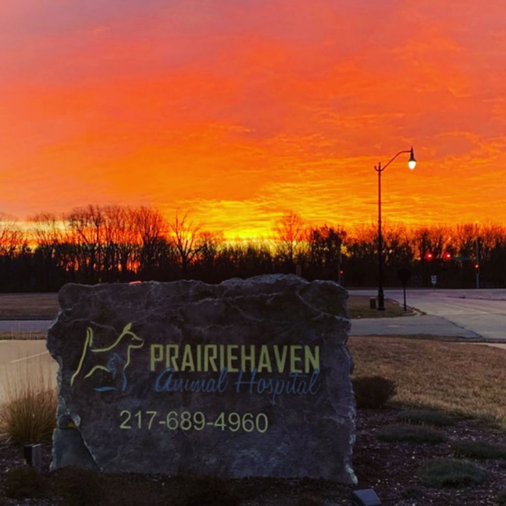 Prairiehaven Animal Hospital: 208 Village Center Rd, Sherman, IL