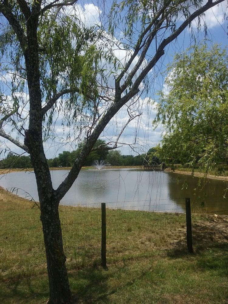 Alabama Randy Owen's Home: 2990 County Rd 256, Fort Payne, AL