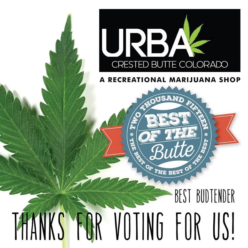 URBA: 310 Bellview, Crested Butte, CO