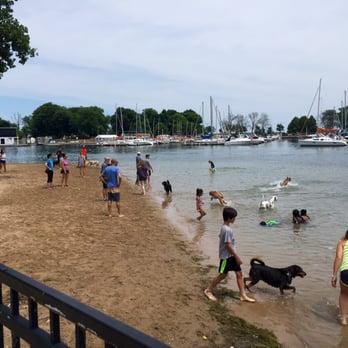 Dog Beach At Belmont Harbor New 35 Photos Amp 38 Reviews