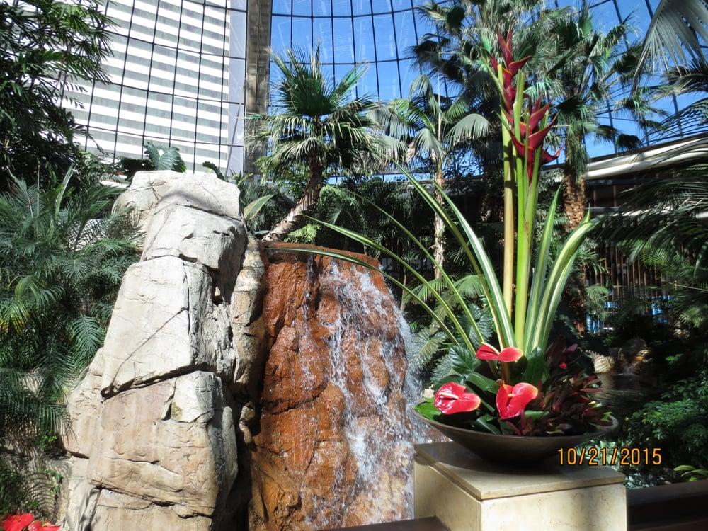 Atrium 39 Photos Botanical Gardens 3400 Las Vegas Blvd S The Strip Las Vegas Nv United