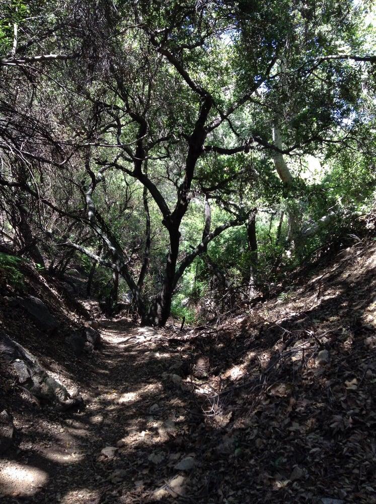 Santa Monica Mountains Conservancy