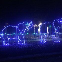 Photo Of Zoo Lights   Memphis, TN, United States.