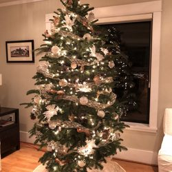photo of hunter christmas trees seattle wa united states 7 foot