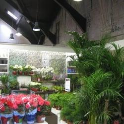 Photo Of Gardenworks   Dublin, Republic Of Ireland